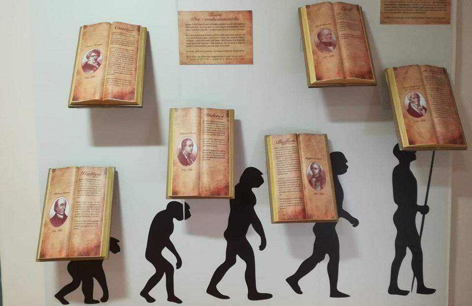 Divertirsi al Museo di Storia Naturale tra poiane e grillai