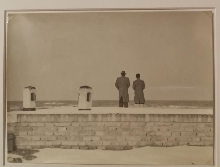 Il laboratorio fotografico di Senigallia. Dalla creazione del Gruppo Misa alla svolta linguistica di Mario Giacomelli