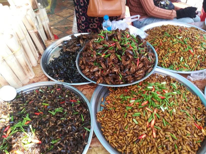 """Viaggio in Cambogia, una vita """"pura"""" tra le zattere del Mekong"""