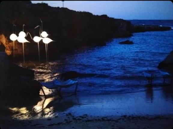 La balena bianca di Genco è illuminata per una notte sul mare di Monopoli. Per salvare l'ambiente