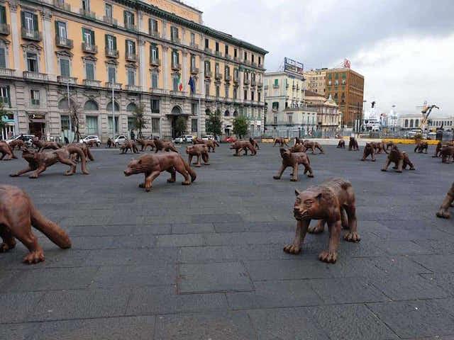 Napoli, in piazza Municipio arrivano i lupi di Liu Ruowang ...
