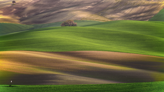 «Nel mio paesaggio ho colto sempre l'essenziale». Il silenzio, la poesia e la luce del fotografo paesaggista Francesco Paolo Calabria
